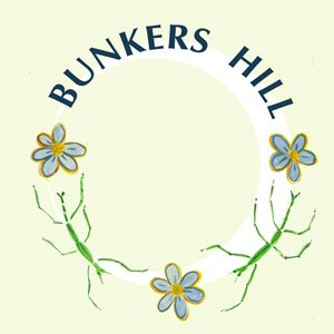 Bunkers Hill logo